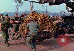 Image of Elephant airlifted Vietnam, 1968, second 7 stock footage video 65675067651