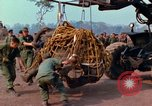 Image of Elephant airlifted Vietnam, 1968, second 8 stock footage video 65675067651