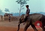 Image of Elephant airlifted Vietnam, 1968, second 11 stock footage video 65675067654