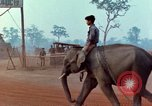 Image of Elephant airlifted Vietnam, 1968, second 12 stock footage video 65675067654