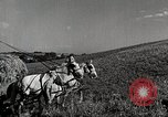 Image of farm family Saint Clairsville Ohio USA, 1940, second 3 stock footage video 65675067689