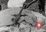 Image of local people Trinidad, 1936, second 6 stock footage video 65675067693