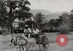 Image of people shopping Kingston Jamaica, 1936, second 4 stock footage video 65675067699