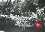 Image of farm activities India, 1961, second 1 stock footage video 65675067723