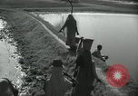 Image of Farm activities India, 1961, second 3 stock footage video 65675067724