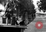 Image of damaged monuments Capernaum Palestine, 1936, second 6 stock footage video 65675067738