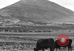Image of Mount Tabor Palestine, 1936, second 8 stock footage video 65675067740