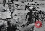 Image of Allies battle Afrika Corps El Alamein Egypt, 1942, second 11 stock footage video 65675067757