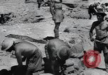 Image of Allies battle Afrika Corps El Alamein Egypt, 1942, second 12 stock footage video 65675067757