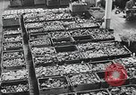 Image of factories Soviet Union, 1944, second 9 stock footage video 65675067759