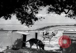 Image of war dogs United States USA, 1944, second 9 stock footage video 65675067777
