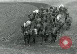 Image of farm plowed United States USA, 1916, second 3 stock footage video 65675067804