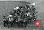 Image of farm plowed United States USA, 1916, second 5 stock footage video 65675067804