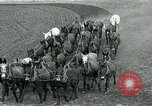Image of farm plowed United States USA, 1916, second 6 stock footage video 65675067804