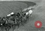 Image of farm plowed United States USA, 1916, second 10 stock footage video 65675067804