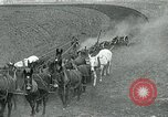 Image of farm plowed United States USA, 1916, second 12 stock footage video 65675067804