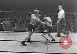 Image of Golden Gloves New York City USA, 1955, second 10 stock footage video 65675067833