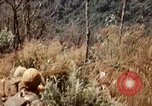 Image of 101st Airborne Division Vietnam, 1971, second 12 stock footage video 65675067849