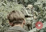 Image of 101st Airborne Division A Shau Valley Vietnam, 1971, second 9 stock footage video 65675067850