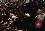 Image of 101st Airborne Division A Shau Valley Vietnam, 1971, second 7 stock footage video 65675067851