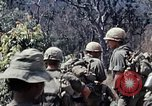 Image of 101st Airborne Division Vietnam, 1971, second 12 stock footage video 65675067854