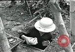 Image of Humane treatment of prisoners of war Vietnam, 1965, second 8 stock footage video 65675067934