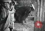 Image of Humane treatment of prisoners of war Vietnam, 1965, second 10 stock footage video 65675067934