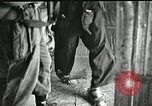 Image of Humane treatment of prisoners of war Vietnam, 1965, second 12 stock footage video 65675067934