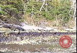 Image of Exxon Valdez oil spill Valdez Alaska USA, 1989, second 6 stock footage video 65675067946