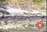 Image of Exxon Valdez oil spill Valdez Alaska USA, 1989, second 8 stock footage video 65675067946