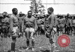Image of training of colored troops Maryland United States USA, 1936, second 1 stock footage video 65675068085