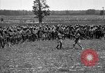Image of training of colored troops Maryland United States USA, 1936, second 11 stock footage video 65675068085
