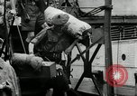 Image of Malayan Emergency Malaysia, 1966, second 8 stock footage video 65675068127