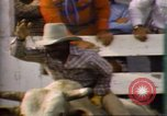 Image of Bull riding United States USA, 1984, second 12 stock footage video 65675068151