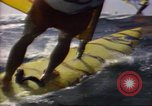 Image of Windsurfing United States USA, 1984, second 6 stock footage video 65675068152