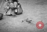 Image of Indian people India, 1938, second 8 stock footage video 65675068233