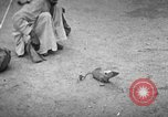 Image of Indian people India, 1938, second 9 stock footage video 65675068233