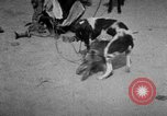 Image of Indian performer India, 1938, second 8 stock footage video 65675068234