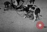 Image of Indian performer India, 1938, second 9 stock footage video 65675068234