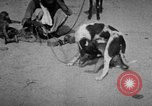 Image of Indian performer India, 1938, second 11 stock footage video 65675068234