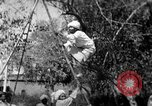 Image of tightrope walking India, 1938, second 10 stock footage video 65675068236