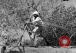 Image of tightrope walking India, 1938, second 12 stock footage video 65675068236