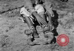 Image of tightrope walking India, 1938, second 8 stock footage video 65675068237