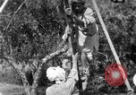 Image of tightrope walking India, 1938, second 10 stock footage video 65675068237