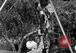 Image of tightrope walking India, 1938, second 11 stock footage video 65675068237