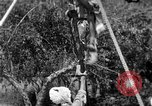 Image of tightrope walking India, 1938, second 12 stock footage video 65675068237