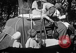 Image of elephant ride India, 1938, second 11 stock footage video 65675068242
