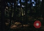 Image of Sylvania Recreation Area Michigan United States USA, 1967, second 6 stock footage video 65675068315