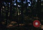 Image of Sylvania Recreation Area Michigan United States USA, 1967, second 7 stock footage video 65675068315