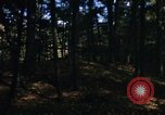 Image of Sylvania Recreation Area Michigan United States USA, 1967, second 8 stock footage video 65675068315